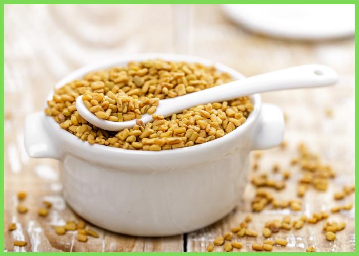 فوائد اكل الحلبة تعرف على الفوائد العظيمة عند تناول الحلبة للجسم عامة بركة للأعشاب الطبية